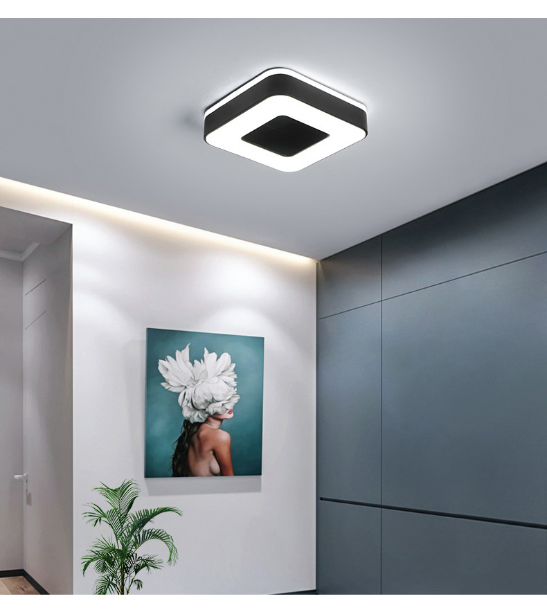 Ha09737afe30645a0959a35a242d70d01r Living Room Ceiling Lights | Drop Ceiling Lights | LED Ceiling Light Corridor Art Gallery Decoration Front Balcony Lamp Porch White Black Power 18W