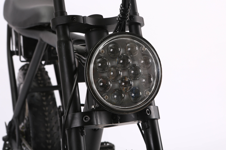 /500w/750w/1000w 250w V-b08m26*4.0 Big Power Fat Tire Electric Bike/cruiser Electric Bike/electric Bicycle 10