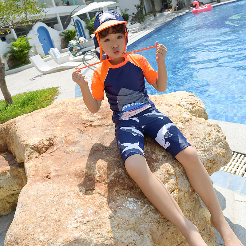 New Style Korean-style KID'S Swimwear BOY'S Split Type Cute Cartoon Shark Big Boy Baby Swimwear
