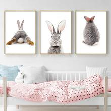Grey Rabbit Animal Posters and Prints Canvas Art Painting Cute Bunny Wall Art Nursery Decorative Picture Nordic Kids Decoration(China)