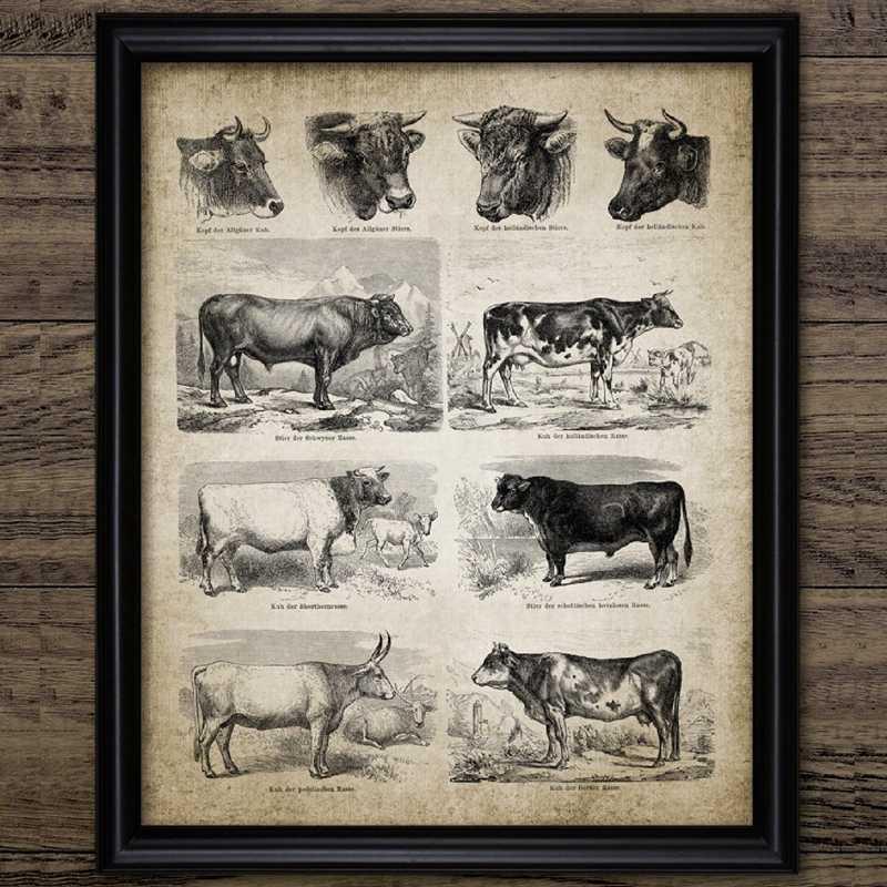 キャンバスプリント現代写真壁アート絵画アンティーク牛品種家の装飾モジュラー北欧スタイルのポスターリビングルーム