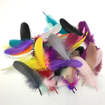 100pcs/Lot Colorful Party Feathers Craft Natural Goose Feather for DIY White Wedding Jewelry Making Home Decoration - discount item  20% OFF Arts,Crafts & Sewing