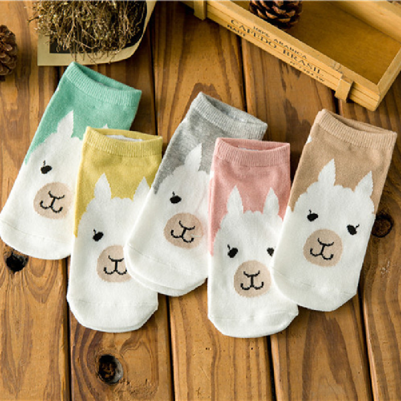 New 2020 Spring And Summer Korean Version Of The Cute Cartoon Candy Bar Women's Boat Socks Cotton Socks Wholesale