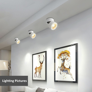 Image 5 - Foldable 360 Degree Rotation LED Ceiling Spot Lights 7W 10W 12W 15W LED Downlight Surface Mounted for For Kitchen Bathroom Light