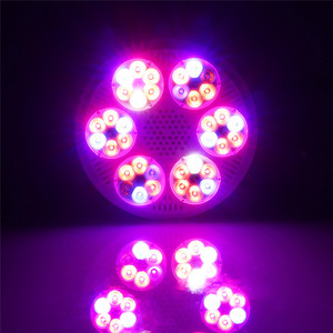 Image 5 - 120ワットフルスペクトルはライト36 leds cob led電球ランプ植物水族館花種子庭の野菜温室E27