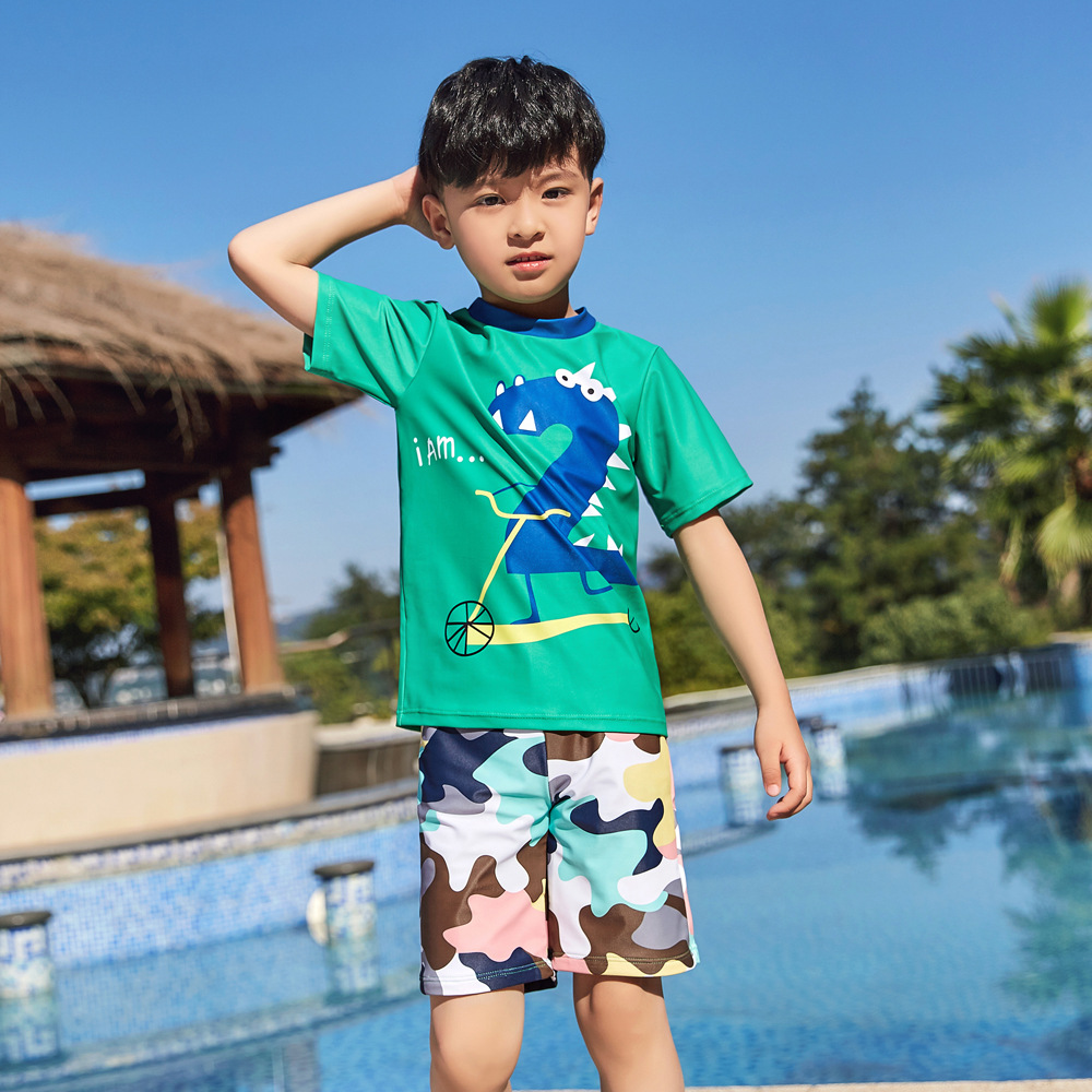 2019 New Style Hot Sales Two-piece Swimsuits Short Sleeve Shorts Camouflage Dinosaur Cartoon Hot Springs Boxer BOY'S KID'S Swimw