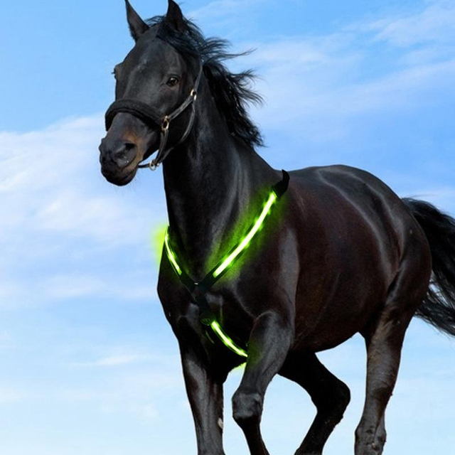 USB Chargeable LED Equestrian Halter Horse Riding Bridle  3