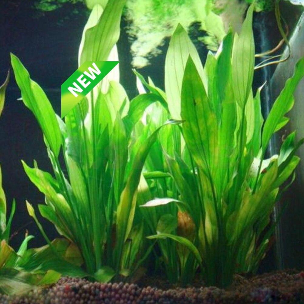 Artificial Plastic Water Plant Grass Aquarium Decorations Plants Fish Tank Grass Flower Ornament Decor Aquatic Accessories