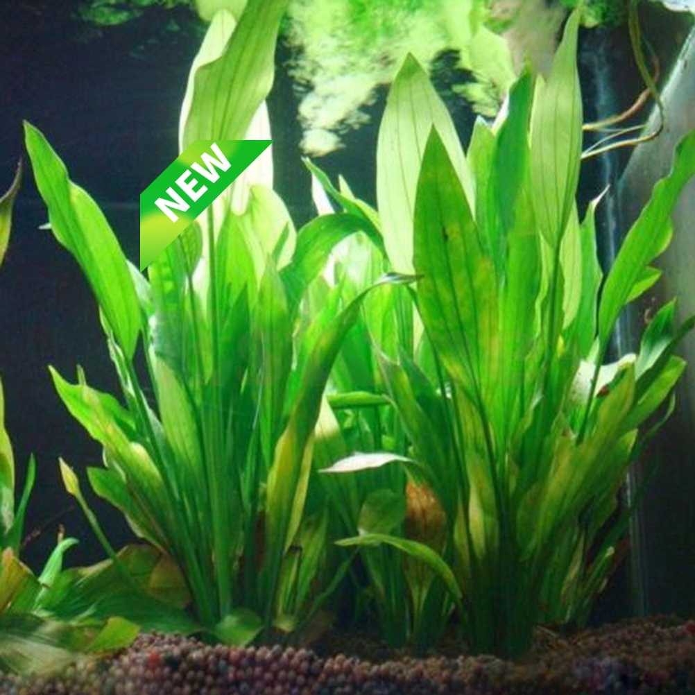 โรงงานผลิตน้ำพลาสติกประดิษฐ์ Grass Aquarium ตกแต่งพืชปลาถังหญ้าดอกไม้ตกแต่ง Aquatic Accessories