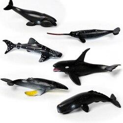 Реалистичный мини-Кит 6 шт., Акула, нарваль, Кашалот, млекологические фигурки, игрушки, морские существа, отлично подходит вечерние вечеринки...