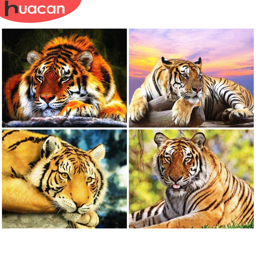 HUACAN Paint By Number Tiger Animal Drawing On Canvas HandPainted Painting Art Gift DIY Coloring By Number Kits Home Decoration