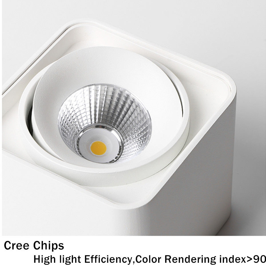 LED Surface downlight (26)