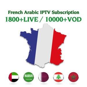 1 Year IPTV France Subscription Arabic Algeria Germany IPTV Belgium Netherlands French IPTV Code Android M3U Mag free test IP TV