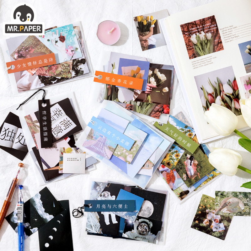 Mr.paper 6 Designs 40Pcs/lot Botany Series Deco Stickers Scrapbooking Bullet Journal Toy Plants Album DIY Stationery Stickers