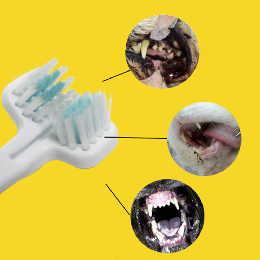 5Pcs Dog Toothbrush Double Heads Teeth Brushing Cleaner Pet Breath Freshener Oral Care for Dog Cats Best Price image