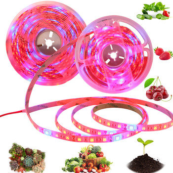 Phyto Lamp for Plants Seedlings Flowers Led Grow Light Full Spectrum Led Strip 5050 Tent Indoor Greenhouse Hydroponic phytolamps 5m led grow light strip full spectrum uv lamps for plants waterproof phyto lamp red bluetape for greenhouse grow tent hydroponic