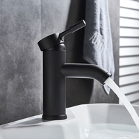 Modern Stainless Steel Paint Faucet Bathroom Basin Faucet Blacked Hot Cold Mixer Tap Single Hole Short