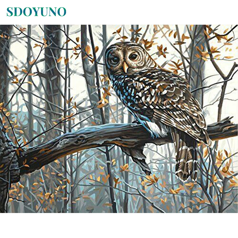 SDOYUNO Frameless Painting By Numbers DIY 60X75cm Owl Animals On Canvas Paint By Number Canvas Painting Kits Home Decor