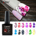 Новое поступление, CANNI, принадлежности для ногтей, быстро растущий гель для дизайна ногтей, отмачиваемый Светодиодный УФ-12 видов цветов, цве...