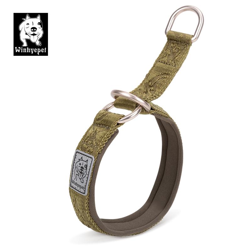 Truelove Dog Training Collar Effective Safe Training Dogs Choker Collars Slip Collars for Dogs Medium Large Puppy Dog Supplies