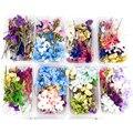 1 коробка сушеных цветов, наполнение УФ-смолой, натуральный прессованный цветок, искусство, Цветочный декор, эпоксидная смола, форма ювелирн...