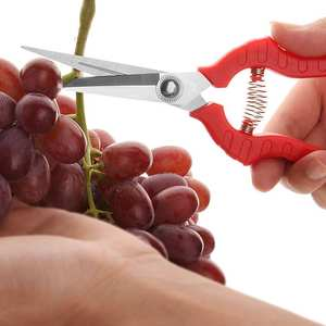 Gardening pruning fruit picking scissors