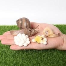 Realista caracol crescimento ciclo figura modelo animal ciclo de vida de caracol figuras miniatura jardim decoração coletor brinquedos educativos