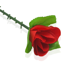 Details about  /DROOPING ROSE comedy RED FEATHER FLOWER stage magic magician