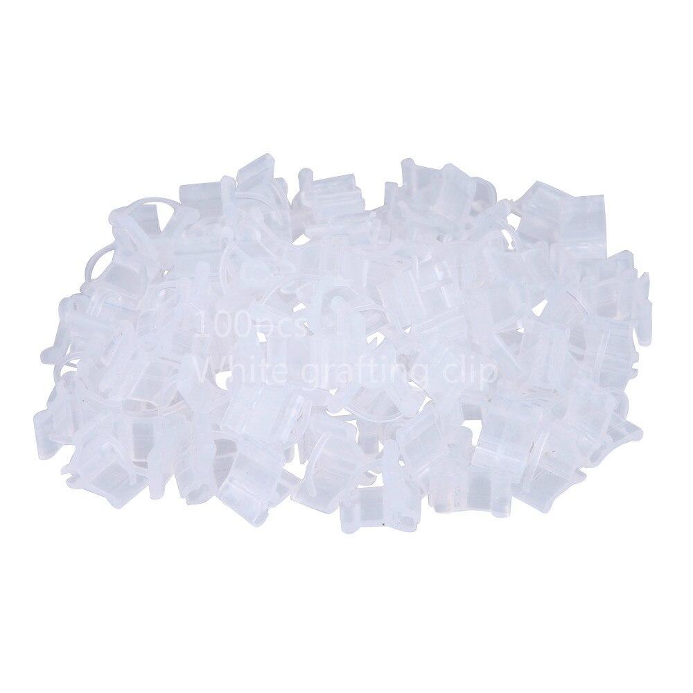 100 садовых прививок пластиковые прозрачные овощи цветы лозы