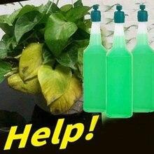 Succulent Plant Hydroponic Flower Nutrient Solution