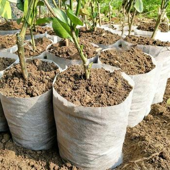 100Pcs/Set Degradable Plant Nursery Bags Seeds Growing Container Garden Tool Grow Bags image