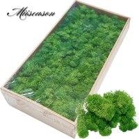 500g/bag Artificial plant eternal life moss Garden home decoration wall DIY Flower material Garden Micro Landscape Accessories