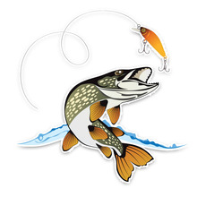 Car Sticker Interesting Animal Fish Fishing Styling Decoration Automobiles Motorcycles Exterior Accessories PVC Decal 15cm*15cm cheap The Whole Body Glue Sticker 0 01cm Stickers cartoon Creative Stickers Not Packaged