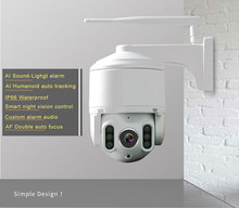 IP camera outdoor 1080P Wifi Camera Outdoor color night vision PTZ Security Speed Dome 360 cctv