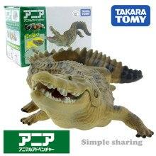 Takara Tomy Tomica Ania Animal aventure eau salée Crocodile comme 32 moule en résine moulé sous pression Pop chaude bébé jouets drôle magique enfants poupées
