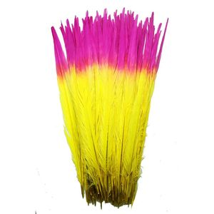 Image 2 - 100Pcs/lot 40 45CM 16 18inch Two Colors Beautiful Pattern Ringneck Pheasant Tail Feathers for Crafts Carnival Decoration Plumes