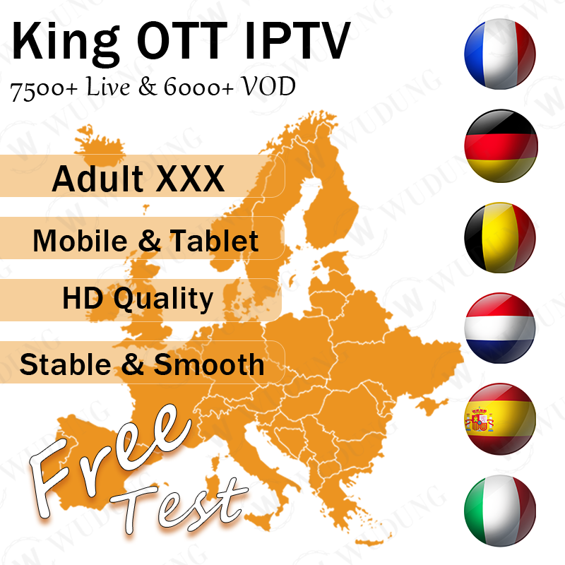 Free Test XXX Spain UK Sweden Portugal Belgium Netherlands Europe IPTV Subscription For Android Box Smart Tv VLC Fast Shipping