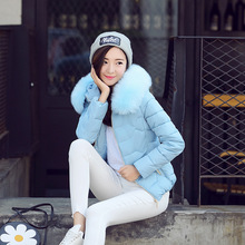 Parkas Blue Pink 2019 Fashion The New Down Jacket Female Hooded Jacket Winter Wo