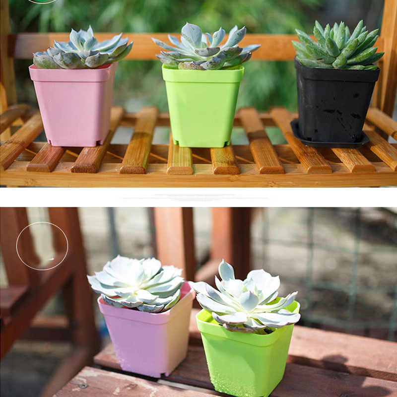 10 Mini Nhựa Vuông Vật Có Hoa Trang Trí Nội Thất Văn Phòng Phòng Dụng Cụ Bào Nhiều Màu Sắc Với Nồi Khay Xanh Vật Có Vườn Hoa nguồn Cung Cấp