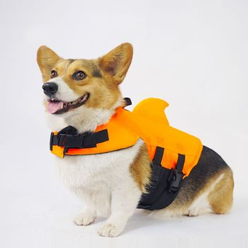 Pet Dog Life Vest Summer Shark Clothes Dogs Jacket Safety Swimwear Pets Swimming Suit