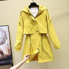 Women's Hooded Jackets 2019 New Autumn Causal Windbreaker Women Basic