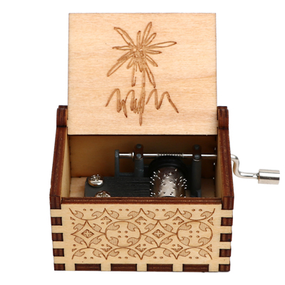 Гравировка ручной работы деревянная Настя музыкальная копилка подарок на день рождения на Рождество, дочь, подарки на день рождения для влюбленных - Цвет: Edelweiss 3