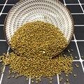 Новинка; Для детей 2, 3, 4 мм Размеры Стекло с Бусины, подходят для изготовления ювелирных изделий, штуцер золото