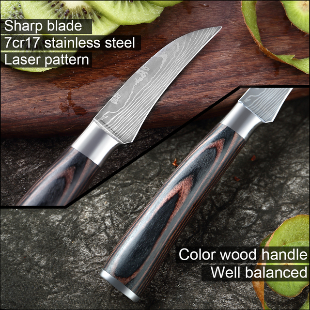 Stainless Steel Paring Knife 4