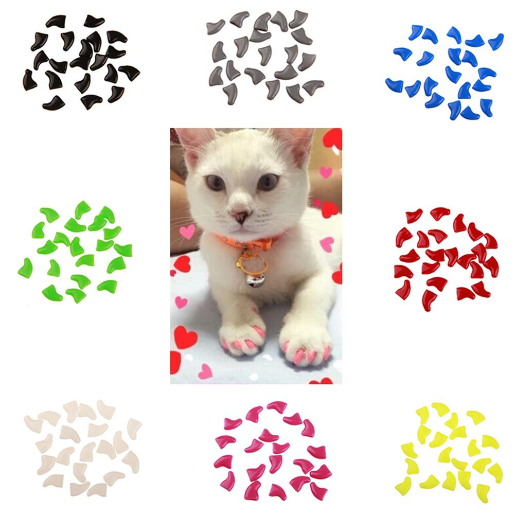 20Pcs Soft Plastic Catss Nail Caps Paw Claw Protector Catss Nail Cover With Glue Colorful Catss Grooming Supplies Pet Accessorie