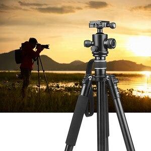 Image 5 - לירות קל משקל מקצועי צילום נייד אלומיניום סגסוגת מצלמה חצובה חדרגל Stand כדור ראש עבור מצלמה דיגיטלית
