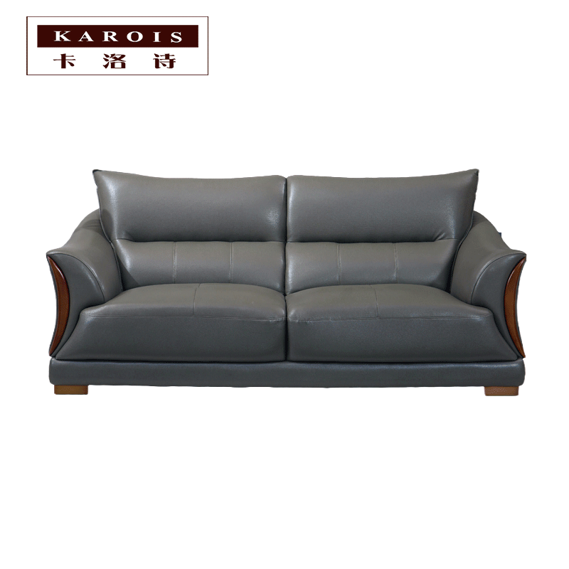 Living Room Leather Sofa Furniture