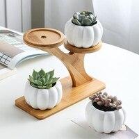 1 Set Ceramic Owl Garden Pots Modern Pumpkin Flowerpot Nursery Succulent Plant Pot 3 Bonsai Planters with 3 Tier Bamboo Shelf