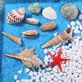 Смешанные морские ракушки Свадебные украшения пляжная тема вечерние, ракушки украшения для дома, аквариум, подсвечник Морская звезда