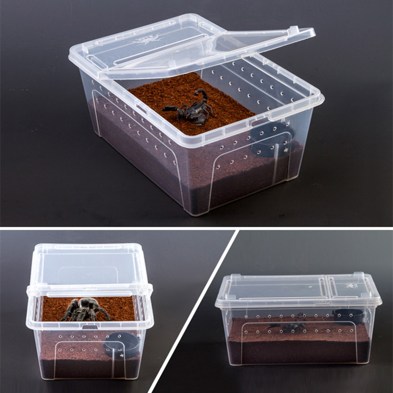 1pc Feeding Box Reptile Cage S/M/L Hatching Container Rearing Tank for Terrarium Tortoise Spider Insect House Pet Supplies